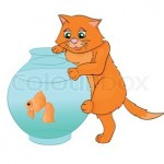 Kat og fisk_www.kattensliv.dk